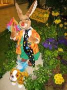 Zirkus Möhretti - Clownhase-Hase als Clown