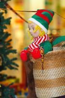 Elf schaut aus einer Satteltasche (unbeweglich)