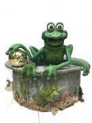 Der Frosch aus dem Märchen -Der Froschkönig-