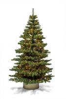 Baum Exclusive 240 mit Beleuchtung und Kugeln