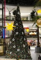 Gigantbaum Standard 10m