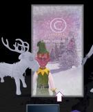Animations - Film auf 3 x SD Karte -  Elfen im Schnee- Christmas in a Box-Zubehör