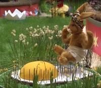 Zirkus Möhretti - Szene Fakir auf Nagelbrett