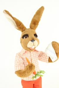 Rabbit with carrot and cloth