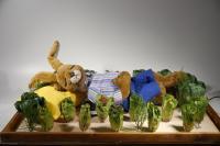 Hase schläft im Salatbeet