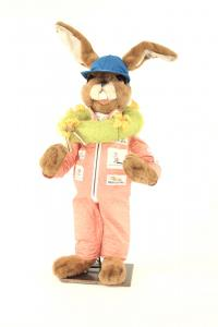 Hare- Formel Ei, the winner