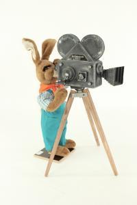 Hare- cameraman with camera