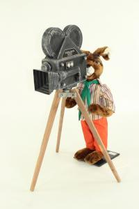 hare- cameraman with camera