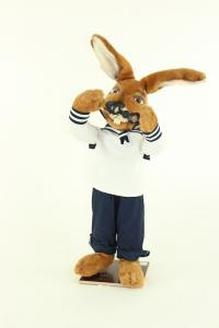 Hare- sailor with diving glasses