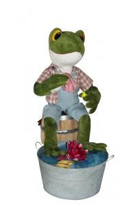 Frosch badet seine Füße