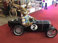 Rabbit in nostalgic MG automobile