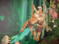Hoppelwood - Tarzan - Szene