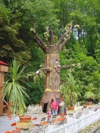 Baum sprechend 10 Meter wetterfest