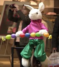 Kaninchen auf Einrad