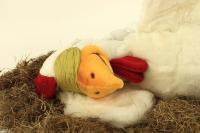 Emanzipation der Hühner - Huhn schläft