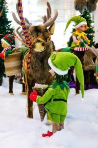 Christmas Elf feeding reindeer
