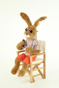 Hare- Directorial assistant with mike