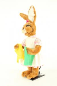 Hare- woman with colored cloths