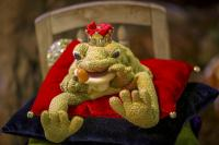 Frog sitting on a covered table from the fairy tale