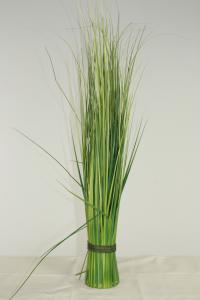 Jungle grass tufts