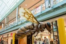 Bienenausstellung